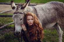 A Girl With Curly Red Hair In Fashionable Clothes In The Style Of Provence Hugs A Cute Donkey