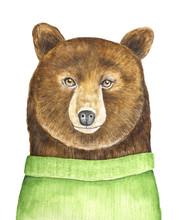 Big Brown Bear Character Portr...
