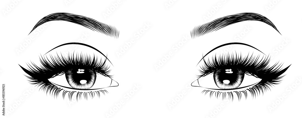 Fototapeta Hand-drawn woman's sexy luxurious eye with perfectly shaped eyebrows and full lashes. Idea for business visit card, typography vector. Perfect salon look.