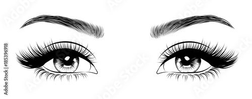 Fototapeta Hand-drawn woman's sexy luxurious eye with perfectly shaped eyebrows and full lashes. Idea for business visit card, typography vector. Perfect salon look. obraz