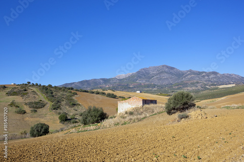 Spoed Foto op Canvas Natuur plowed fields and barn