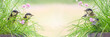 Leinwandbild Motiv Frühlings- Panorama mit Vögel im Gras und Textfreiraum