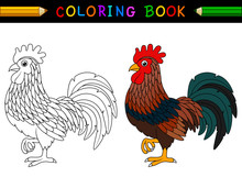 Cartoon Rooster Coloring Book