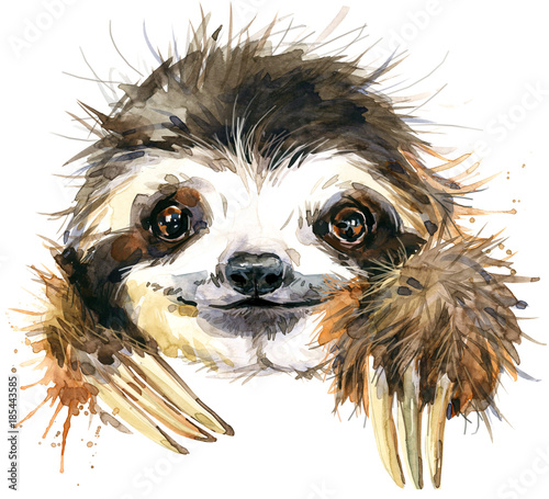 Stampa su Tela  Watercolor sloth illustration. tropical animal