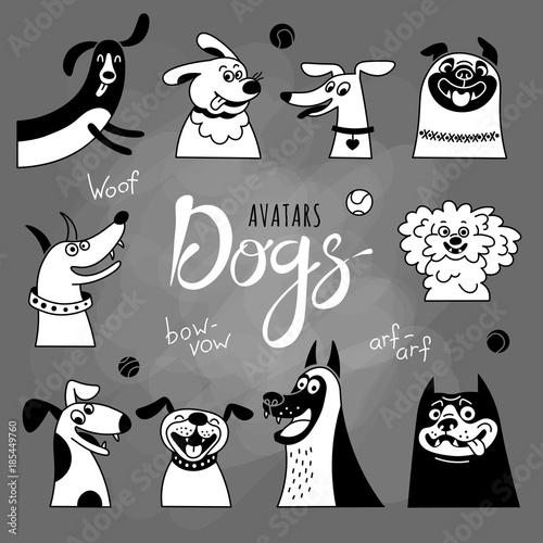 Foto  Avatar dogs