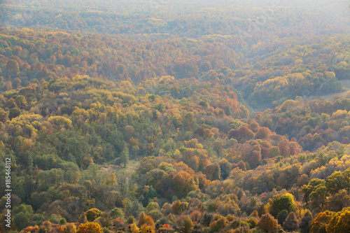 Foto op Aluminium Heuvel Top view of forest in the fall with haze