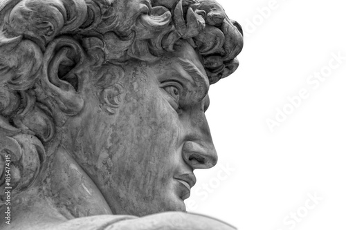 Head of a famous statue by Michelangelo - David from Florence, isolated on white Fototapete
