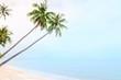 Coconut palm trees on sand beach and calm sea