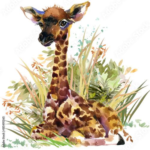 mlode-zyrafy-akwarela-dzikich-zwierzat