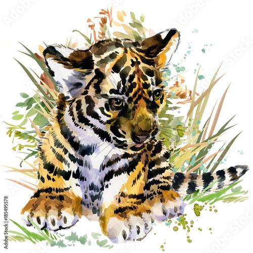 tygrysiątko. ilustracja akwarela zwierzęta leśne