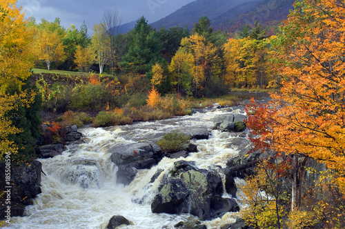 Adirondacks,  Ausable River, New York State. Wallpaper Mural