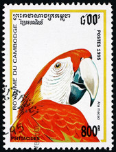 Postage Stamp Cambodia 1995 Scarlet Macaw