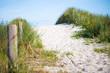 Weg in den Dünen am Meer an einem sonnigen Tag
