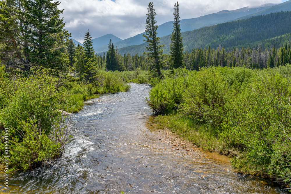 Fototapeta Mountain Summer Storm - A summer afternoon storm coming over Glacier Creek and surrounding mountain hills and dense forest in Rocky Mountain National Park, Estes Park, Colorado, USA.