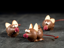 Chocolate Covered Mouse On Top...