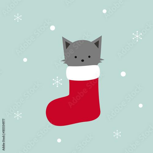 Fotografie, Obraz  grey cat in red Christmas sock, snowflakes vector illustration background, kitte