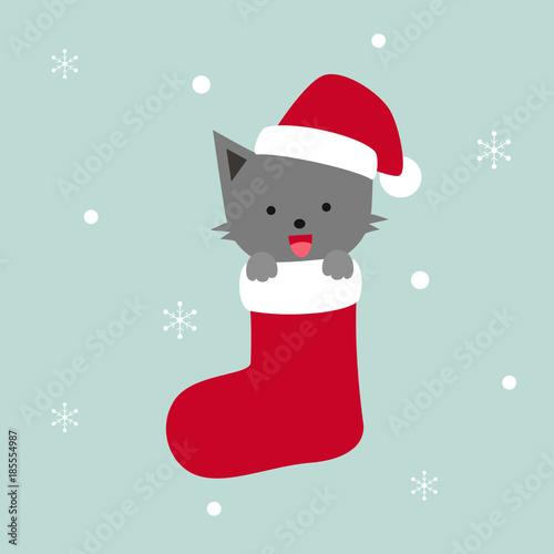 grey cat in red Christmas sock, snowflakes vector