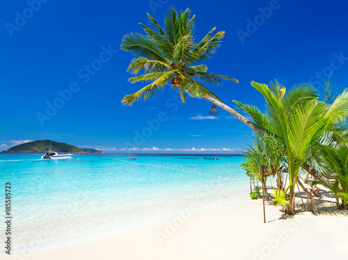 Photographie  Tropical beach scenery at Caribbean Sea