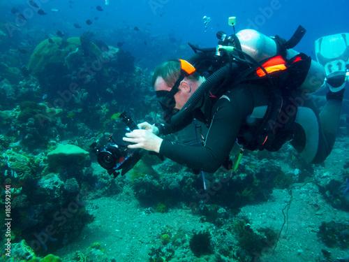 Fotobehang Duiken diving videograph, underwater Philippines