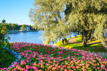 City Park With Flowers And A R...