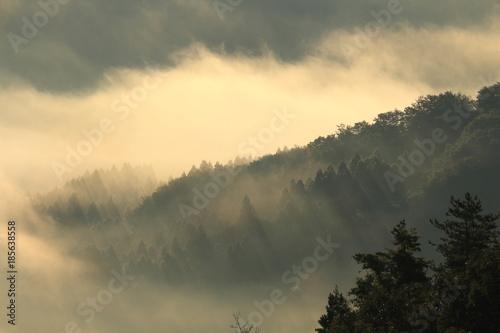 Fotografie, Obraz  里山の夜明けと朝霧 眺海の森 Chokainomori, Shonai, Yamagata, Japan