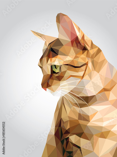Fototapeta Tabby brown cat green eyes isolated on white background, red orange kitty low polygon, animal crystal design illustration, modern geometric graphic