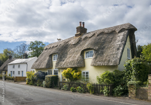 Fotografia, Obraz Thatched Cottages in an English Village
