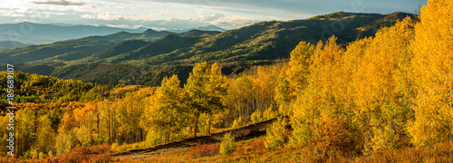 Valokuvatapetti Sunset Golden Valley - A panoramic autumn sunset view of golden aspen grove in a mountain valley, Routt National Forest, Steamboat Springs, Colorado, USA
