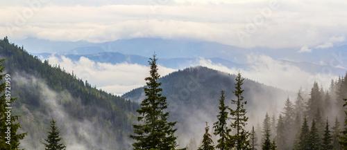 Naklejka premium Panoramiczny widok mgliste Karpaty z niskimi chmurami