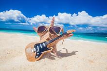 Starfish Guitar Player On Beach