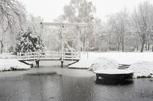 Snowfall In A Park With A Brid...