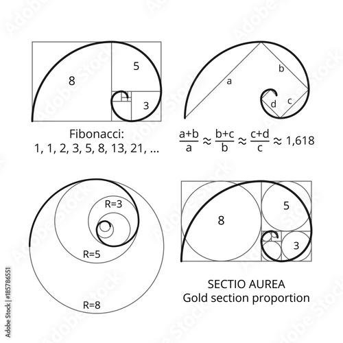 Golden fibonacci ratio spirals Fotobehang