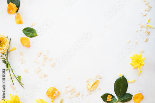 Keuken foto achterwand Bloemen floral design. white background. negative space concept. flowers and petals frame