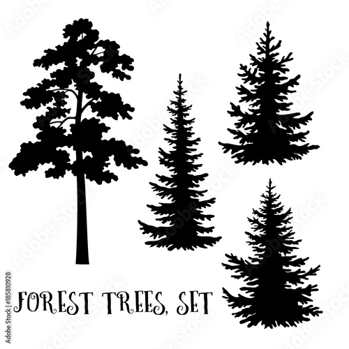 Fir And Pine Trees Set Black Silhouettes Isolated On White