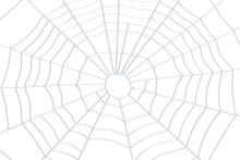 Spider Web Closeup, 3D Rendering