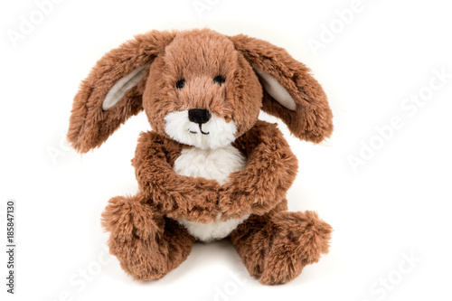 Photo  Fuzzy brown soft bunny on a white background
