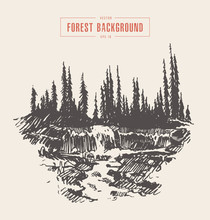 Vintage River Waterfall Fir Forest Drawn Sketch