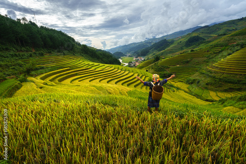 Garden Poster Rice fields Terraced rice field in harvest season with ethnic minority woman on field in Mu Cang Chai, Vietnam.
