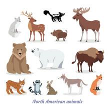 North American Animals Cartoon...