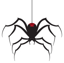A Black Widow Spider Is Descen...