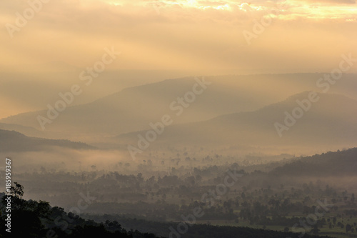 Wall Murals Cappuccino Beautiful mountain landscape under mist in the morning.