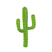 Traditional Cactus Plant With ...