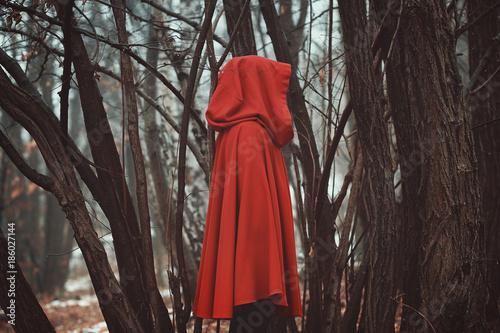 Fotografía  Mysterious hooded figure