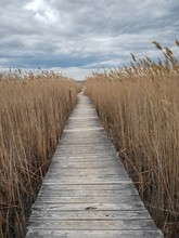 A Boardwalk Through The Marsh Can Be A Great Place For Silence And Solitude. Located In New England On The Atlantic Coast Of Massachusetts