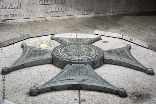 Fototapeta Pomnik Armii Poznań Virtuti Militari obraz