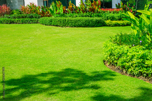 Poster Green Landscape formal, front yard is beautifully designed garden.