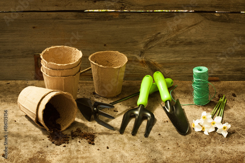 Fototapeta Garden Tools On Old Wooden Gray Table. Spring Planting Flowers And Vegetables. obraz