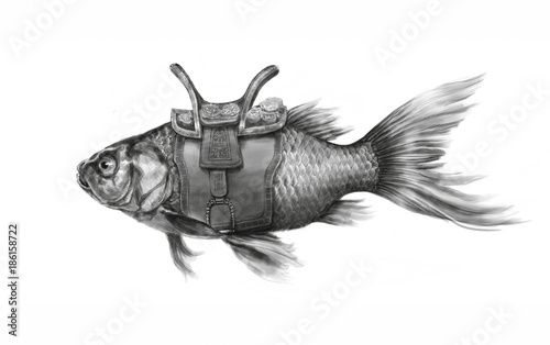 Fish with saddle Canvas-taulu