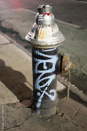 Fotografía  Fire Hydrant, Lower East Side