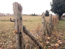 Weathered Cedar Gate Post And Rusted Barbed Wire Fence